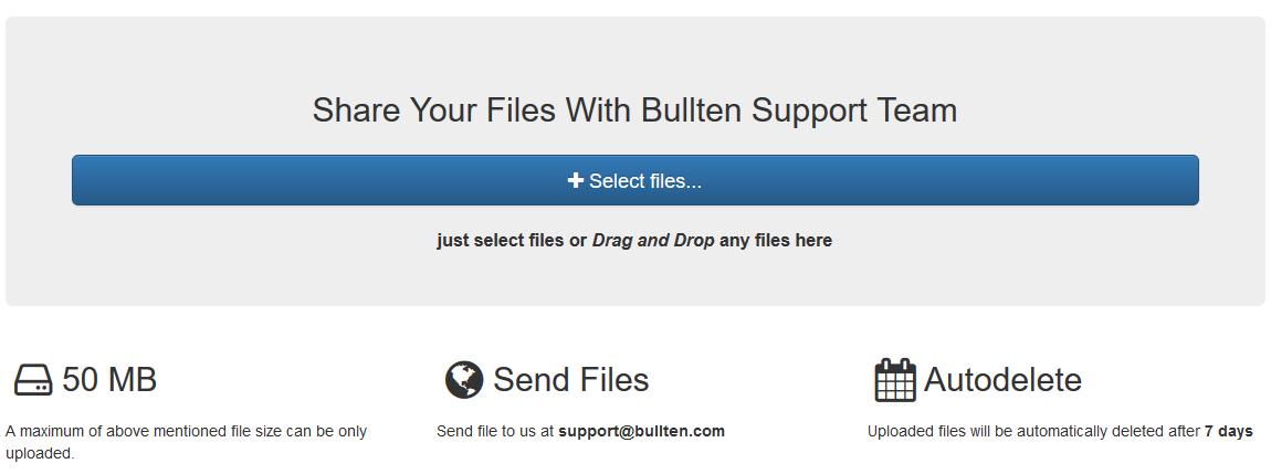 Sharing Files With Bullten's Team